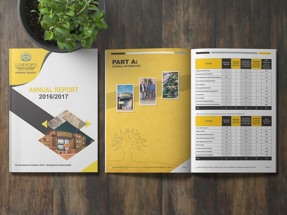 annual-report-layout